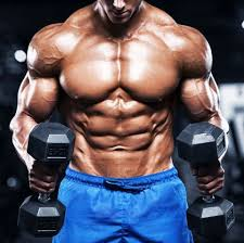 reasonable SARMs supplement